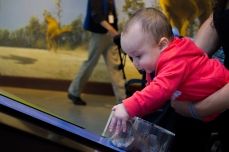 An infant gets hands on with a fossil.