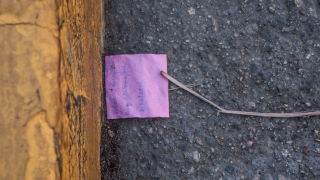 A bright pink post-it note and a single twig rest in a USC gutter.